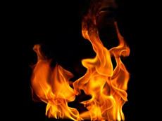 PITTA ピッタ 火のエネルギー